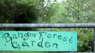Bangor Forest Garden – BFG